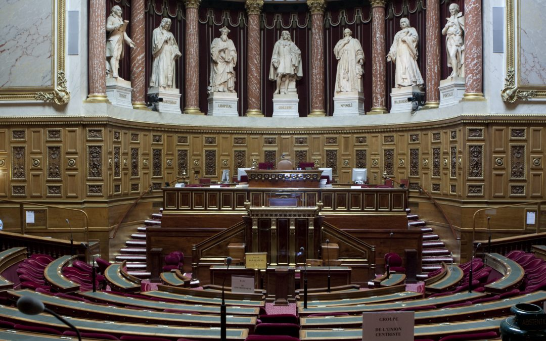 Criminal Obstruction to Abortion: The French Senate Refreshes the Text Without Taking out its Freedom-Destroying Dimension